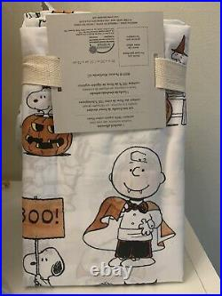 Pottery Barn SET Pillow+case Snoopy pumpkin halloween Charlie Brown holiday gift